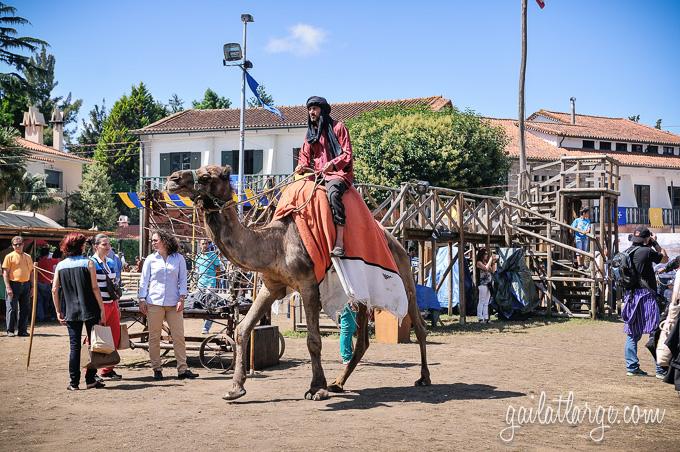 Viagem Medieval 2014 (Santa Maria da Feira, Portugal) (11)