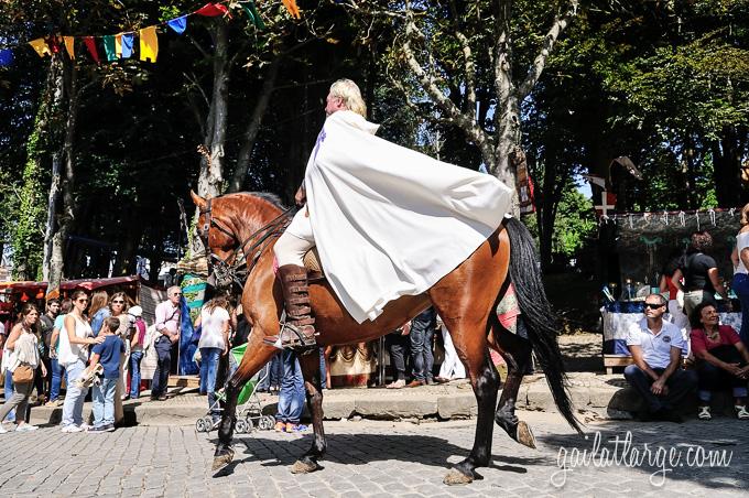 Viagem Medieval 2014 (Santa Maria da Feira, Portugal) (12)