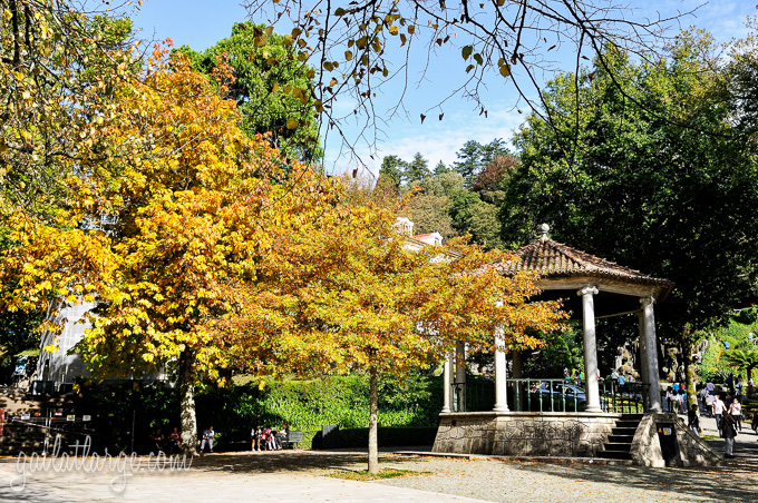 autumn on Bom Jesus do Monte (Braga, Portugal) (2)