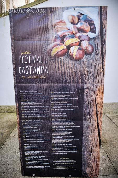 Festival da Castanha (Arouca, Portugal) (3)