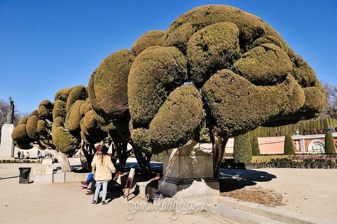 Parque del Buen Retiro (Madrid, Spain) (2)